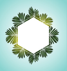 Tropical leaf with copy space vector