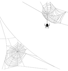 two spider webs vector image vector image