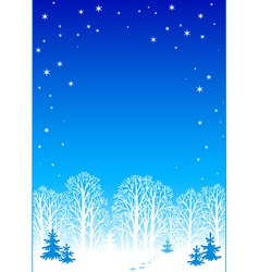 winter night background eps8 vector image vector image