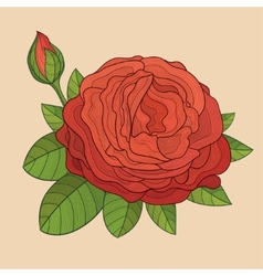 Decorative isolated rose with bud vector