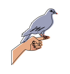 dove in hand peace liberty concept icon vector image