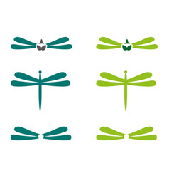 dragonfly vector image vector image