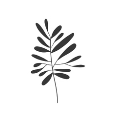 gray scale small leaves olive vector image