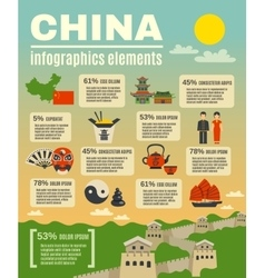 Infographic Presentation Poster On Chinese vector image vector image
