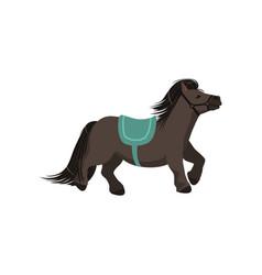 Cute dark grey pony thoroughbred horse vector