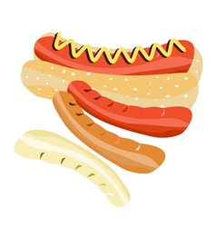 Delicious Hot Dog on A White Background vector image vector image