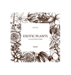 Exotic plants background vector