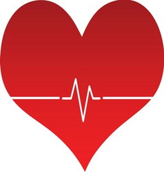 Heart line 02 resize vector image vector image