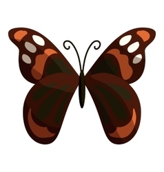 Multicolored butterfly icon cartoon style vector