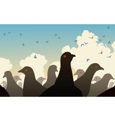 pigeon crowd vector image vector image