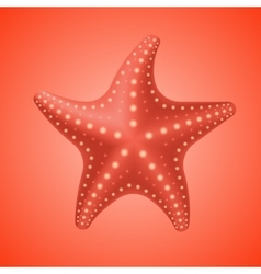 Realistic red starfish icon vector image vector image