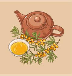 sea buckthorn tea vector image