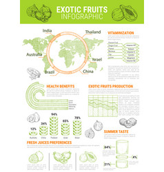 Infographics for exotic tropical fruits vector