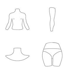 Torso leg neck and buttocks body parts set vector