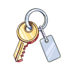 Key with keychain vector image vector image