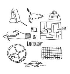 Mice in laboratory hand drawn vector