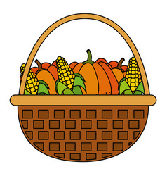 pumpkins and corns design vector image