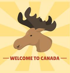 Moose head mammal trophy wildlife antler north vector