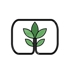 drawing plant leaves natural environment symbol vector image