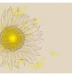 Background with yellow sunflower vector