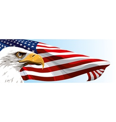 USA EAGLE FLAG vector image