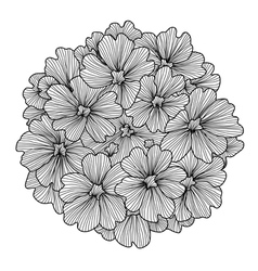 Decorative verbena flower vector
