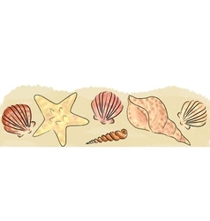 sand and shells border vector image