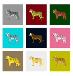 set of in flat style tigers vector image vector image