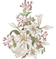 Bunch of lilies and honeysuckle vector image