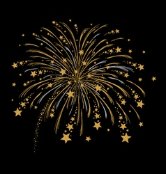 Gold and silver firework vector