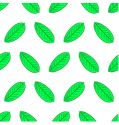 seamless pattern from green leaf of plant from vector image vector image