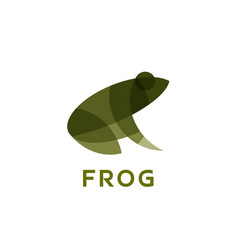 Frog the effect of overlay modern vector