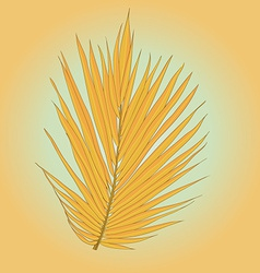 Palmleaves10 vector