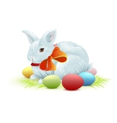 White easter bunny sitting on green grass bunny vector