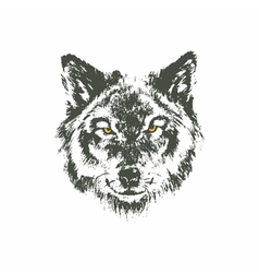 Hand drawn wolf sketch on white background vector