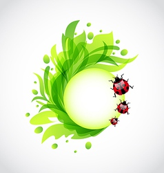 Eco floral transparent background with ladybugs vector image