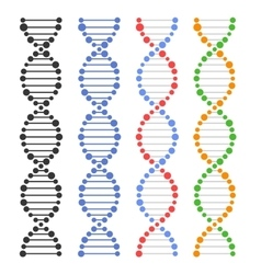 Dna genome molecules set vector