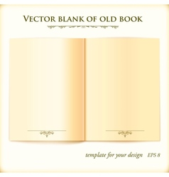 Open Old Book template for your design vector image