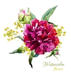 Watercolor summer flowers vector image