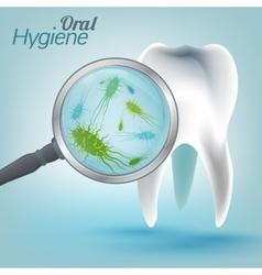 Teeth hygiene 03 a vector