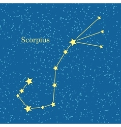 Night Sky with Scorpius Constellation vector image