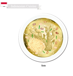 Soto or traditional indonesian clear chicken soup vector