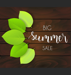 summer sale green leaves background vector image