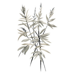 Watercolor branches with leaves on white vector