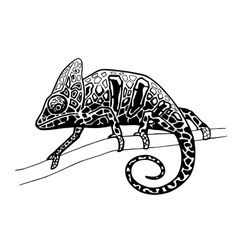 chameleon isolated hand drawn vector image