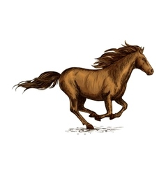 Running horse sketch for equestrian sport design vector