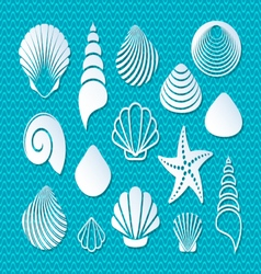 White sea shells icons vector