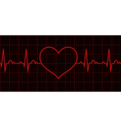 Heart beat cardiogram cardiac cycle vector