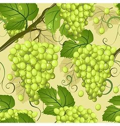 seamless texture of grapes vector image