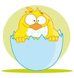 Little chick peeking out of an egg shell vector